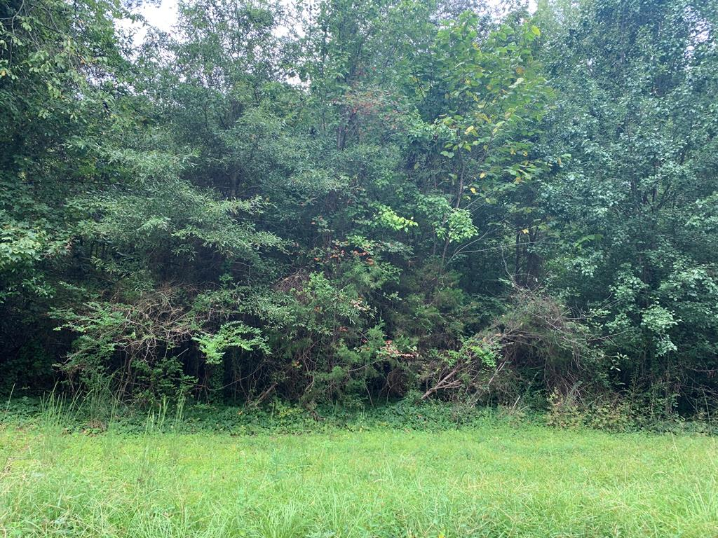 Lot In Thomson