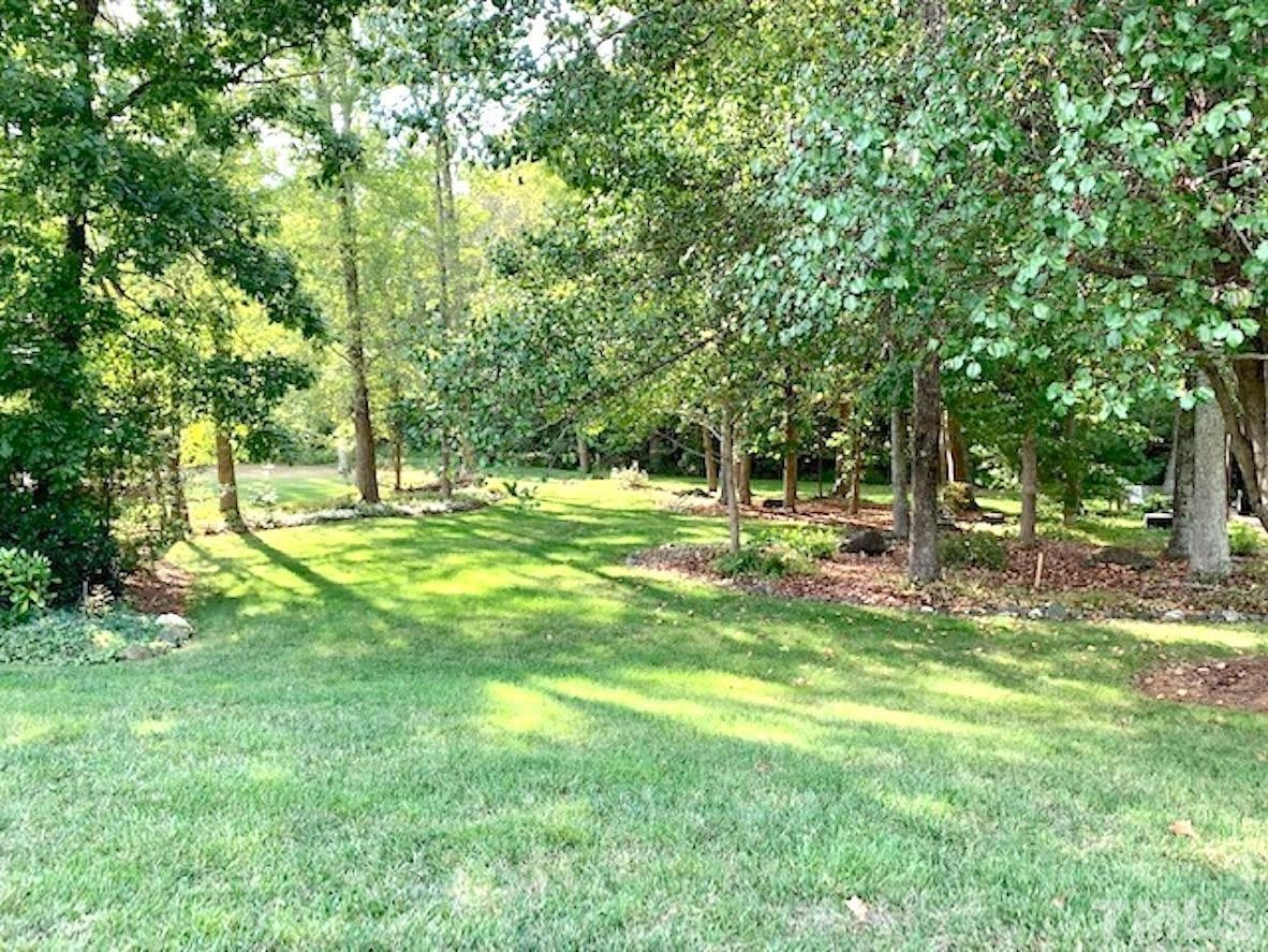 Lot In Forest Trace