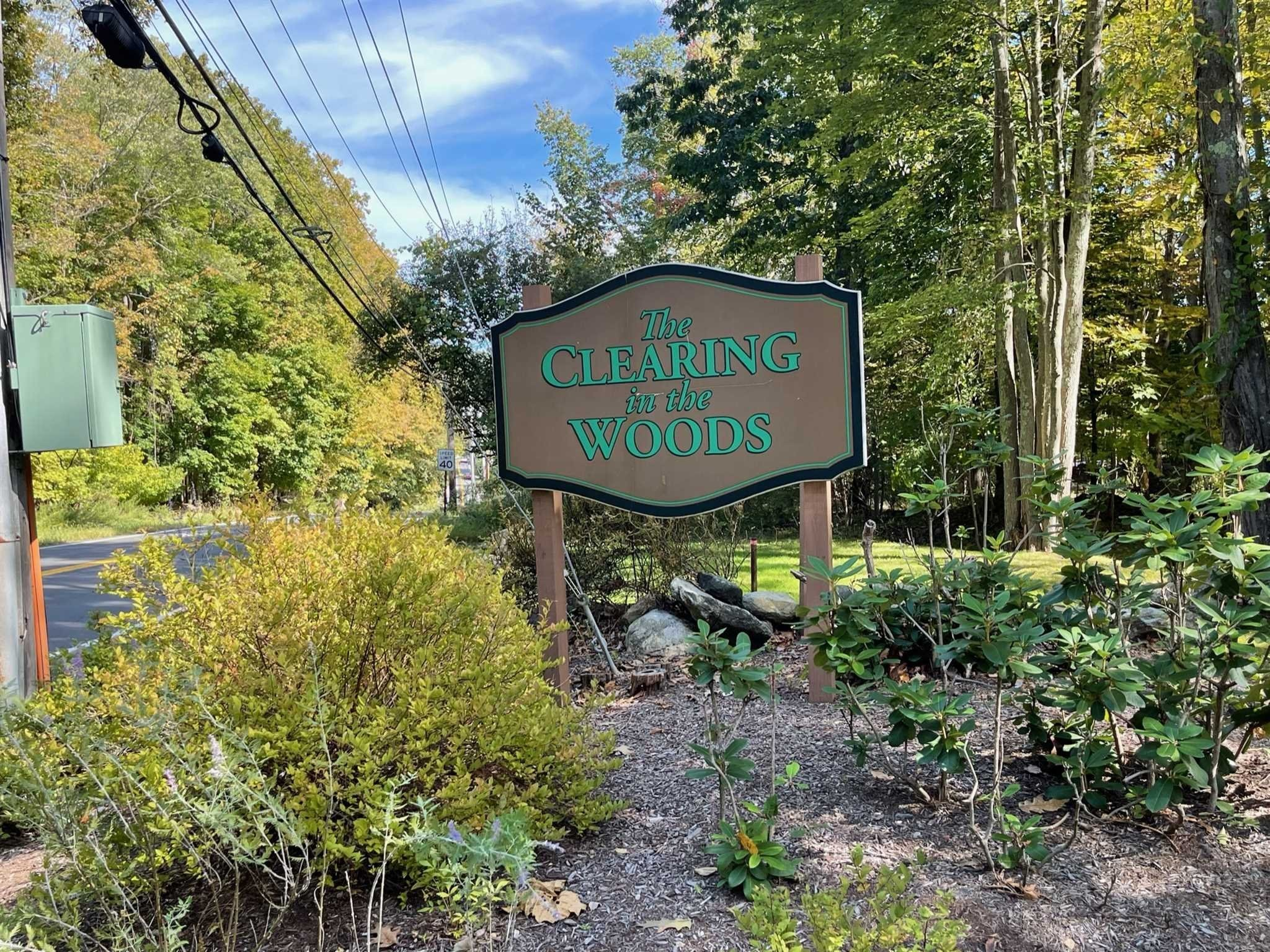 Updated 2-Bedroom Condo In Clearing In The Woods