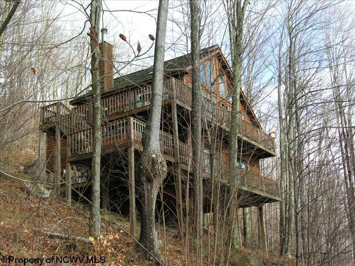 101 HIKERS CHALLENGE ROAD Davis WV 26260 id-469256 homes for sale