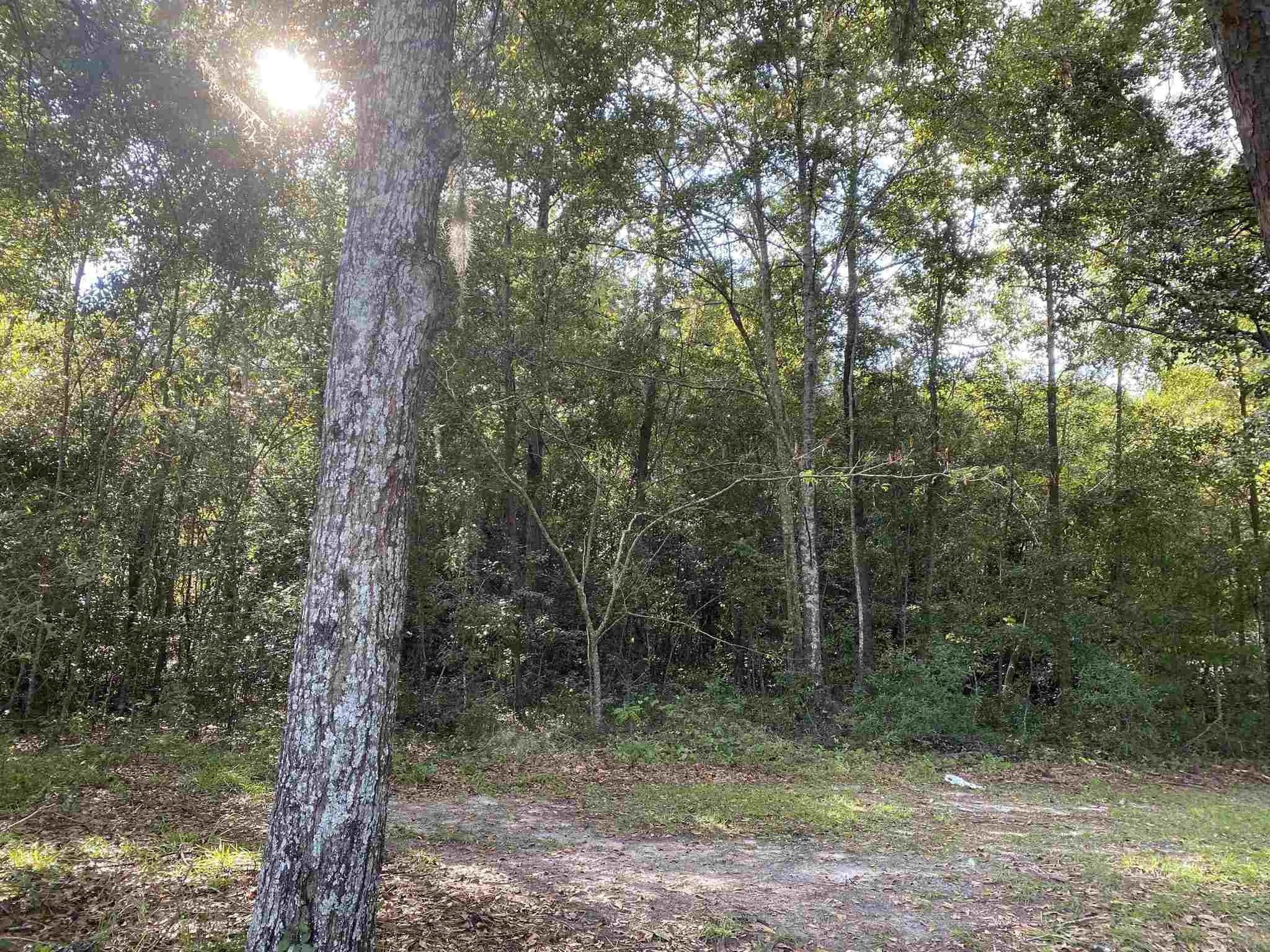Lot In Tallahassee