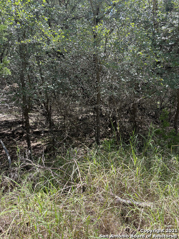 Lot In Comal Hills
