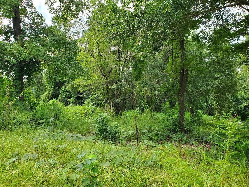 Lot In Riverview Heights