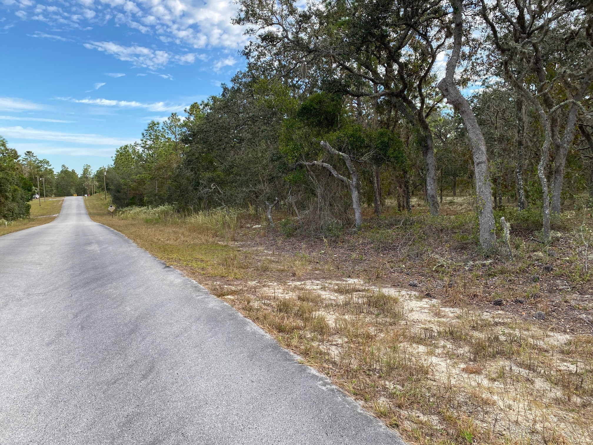 Lot In Dunnellon