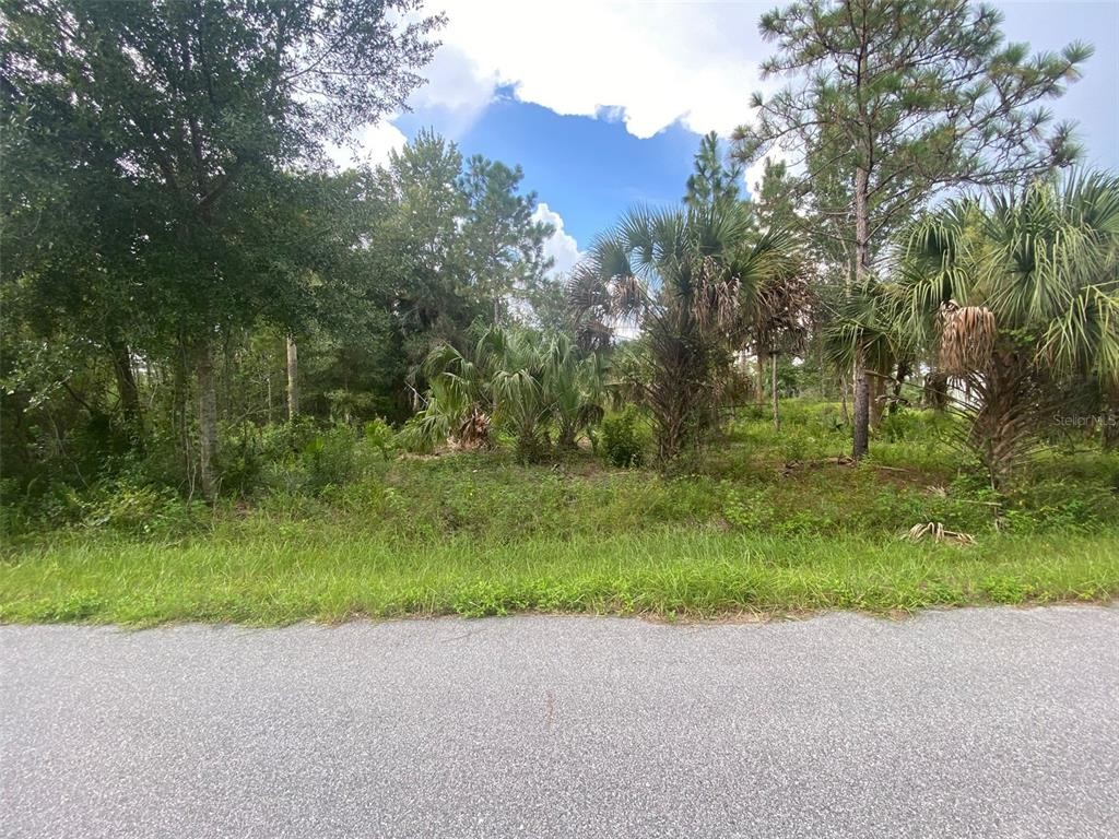 Lot In Canaveral Acres