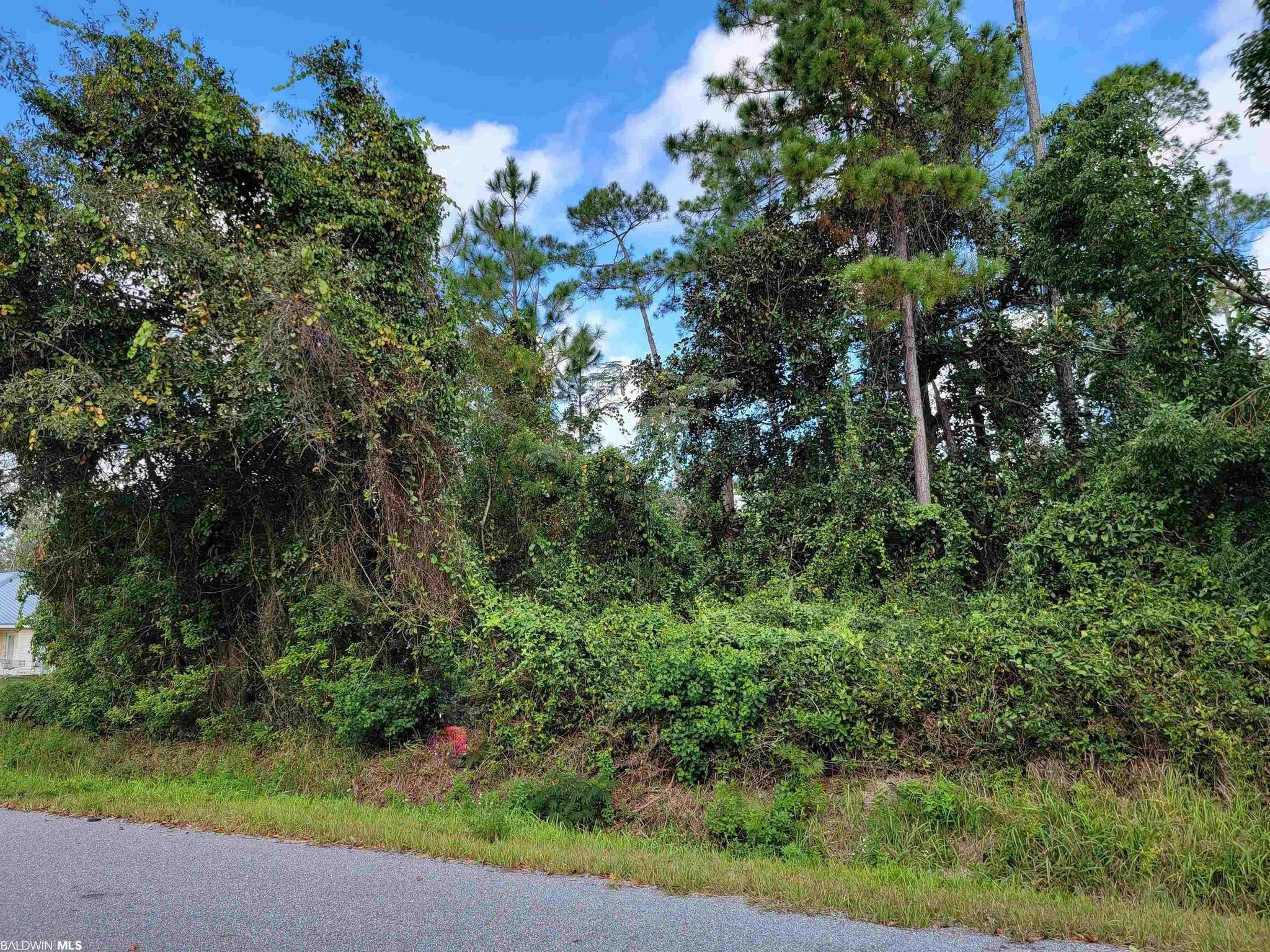Lot In Gulf Shores