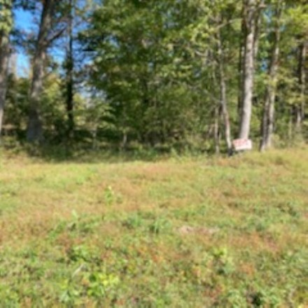 Lot In Pine Acres