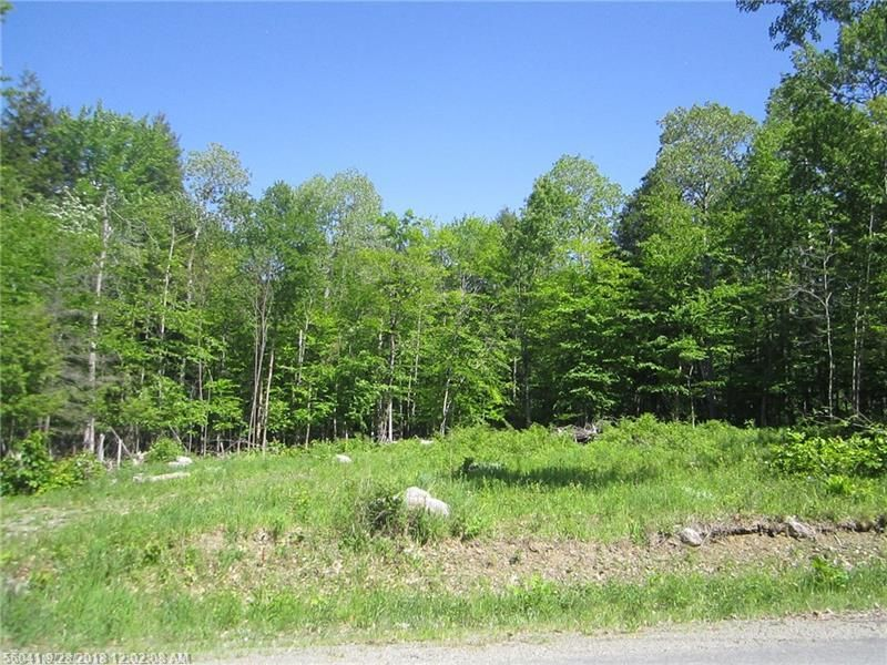 214 WILDERNESS DR Medway ME 04460 id-1491887 homes for sale