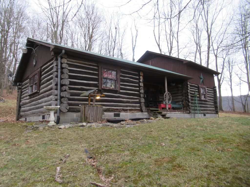 1069 ZENITH ROAD Gap Mills WV 24941 id-496848 homes for sale