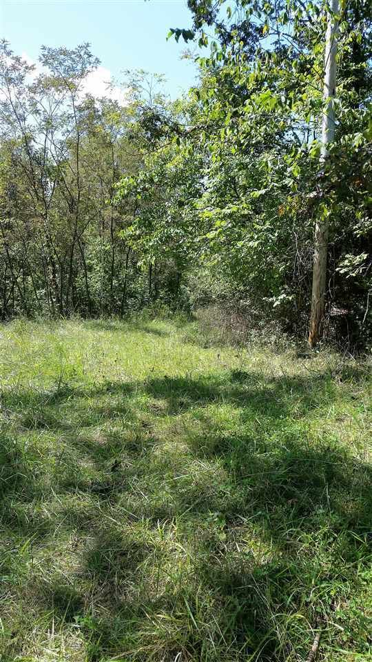 7300 GOOSE RUN RD Lesage WV 25537 id-1179652 homes for sale