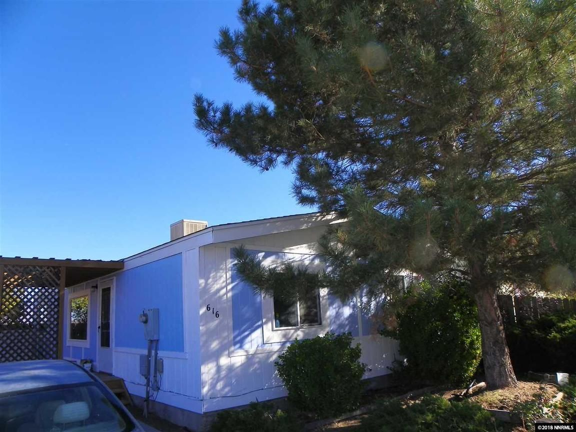 616 JENNI LANE Moundhouse NV 89706 id-2096150 homes for sale