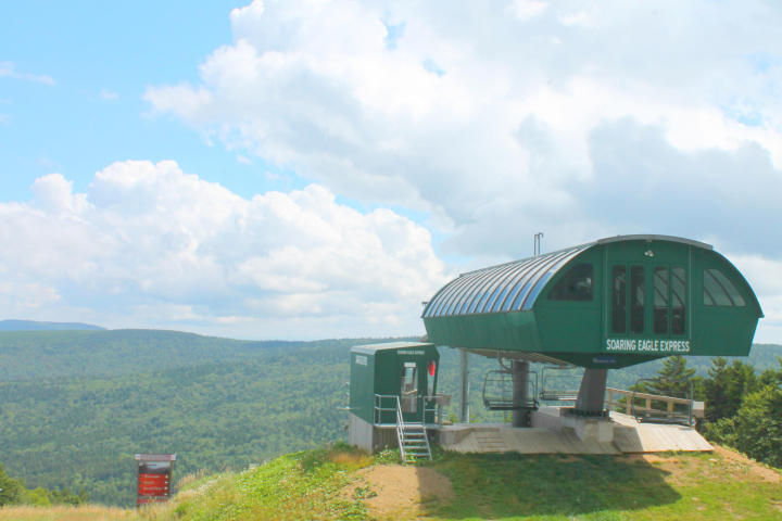 101 TOP OF THE WORLD Snowshoe WV 26209 id-949946 homes for sale