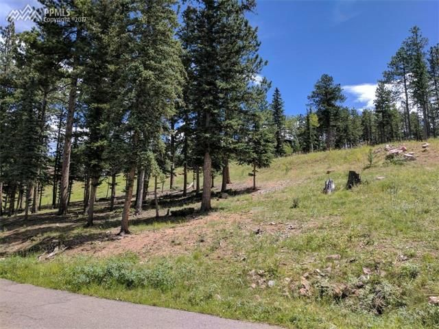 Home For Sale 215 Iron Eagle Point Woodland Park CO 80863