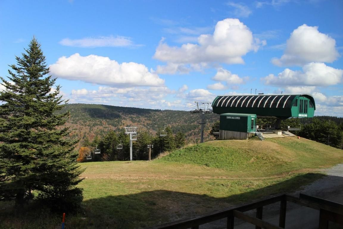 123 TOP OF THE WORLD Snowshoe WV 26209 id-425886 homes for sale