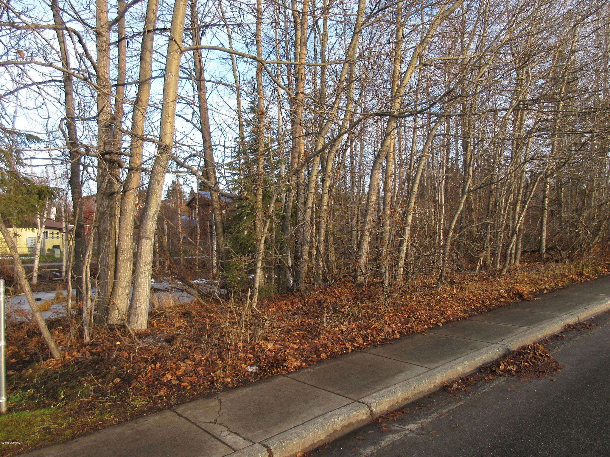Lot In Fairview