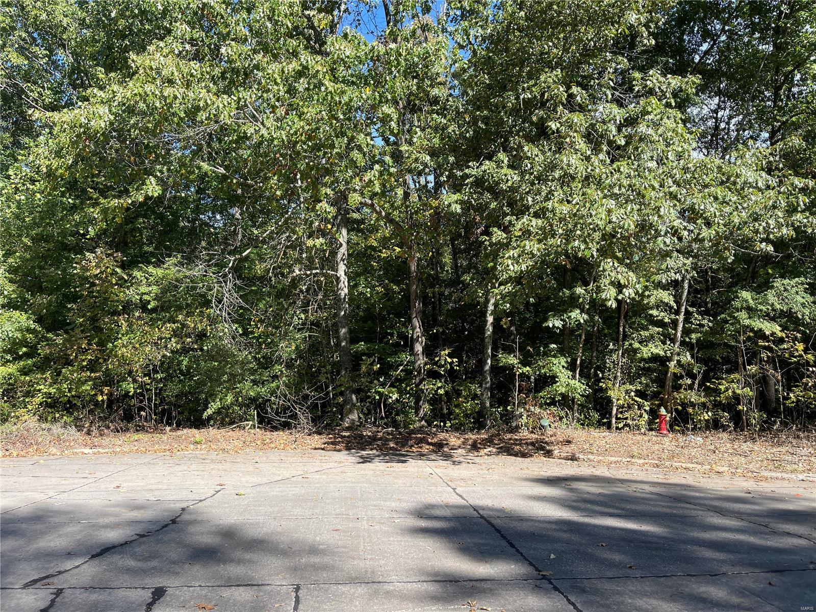 Lot In Jackson