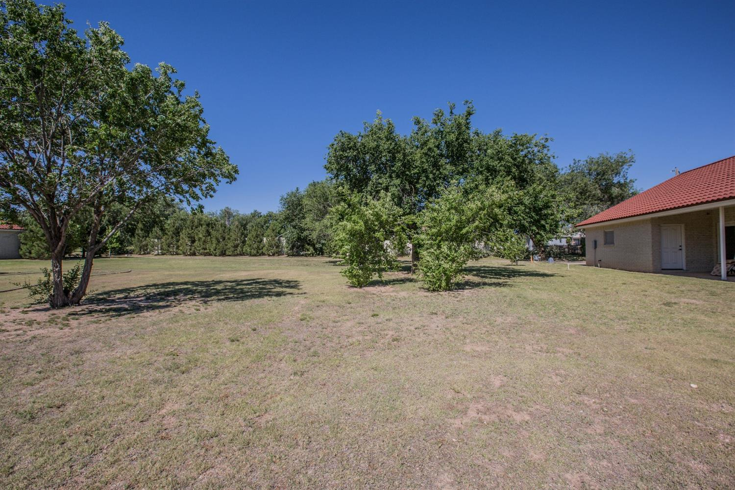 Secluded Lot With Garden