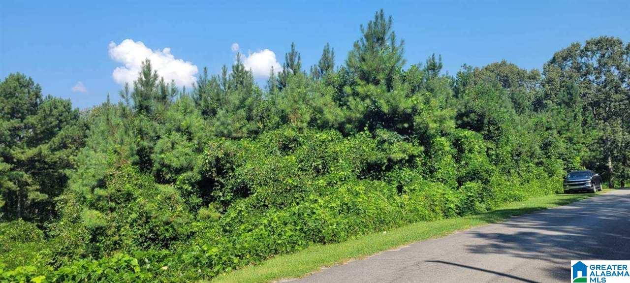 Lot In Green Acres
