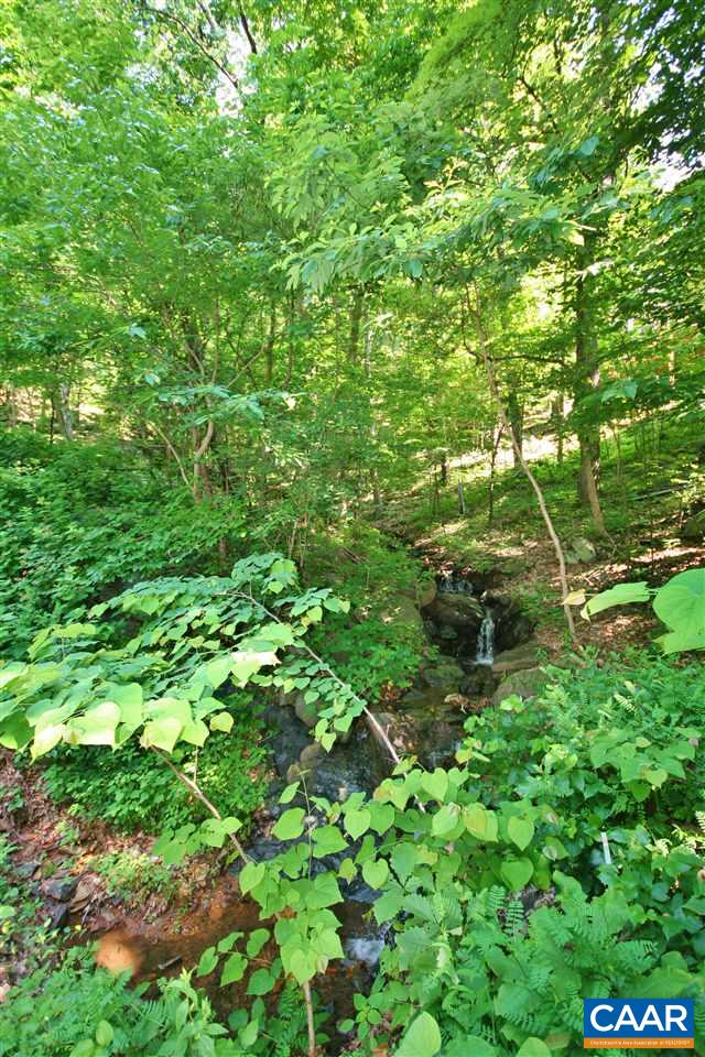 Lot In Nellysford