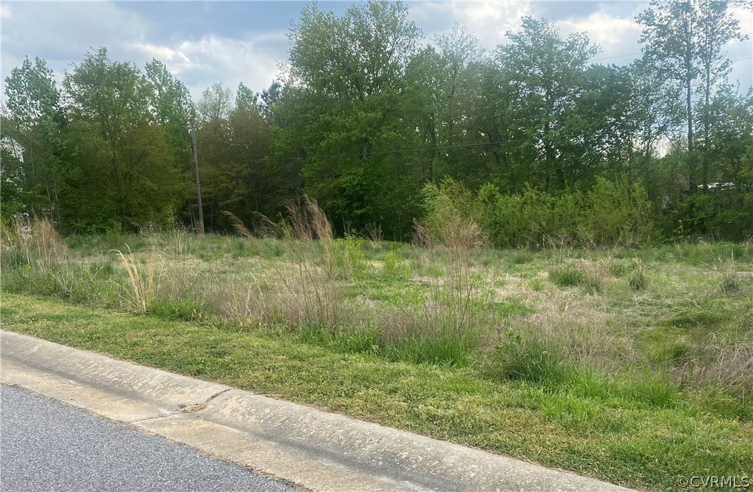 Lot In Chester Grove