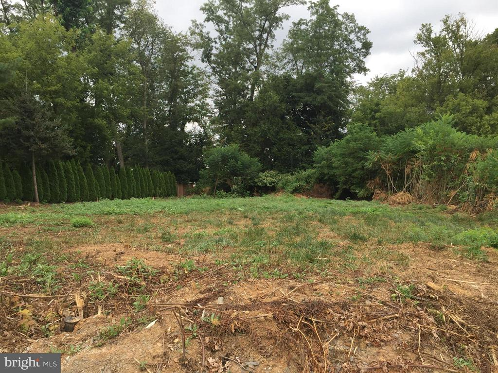 Lot In Hallwood Heights
