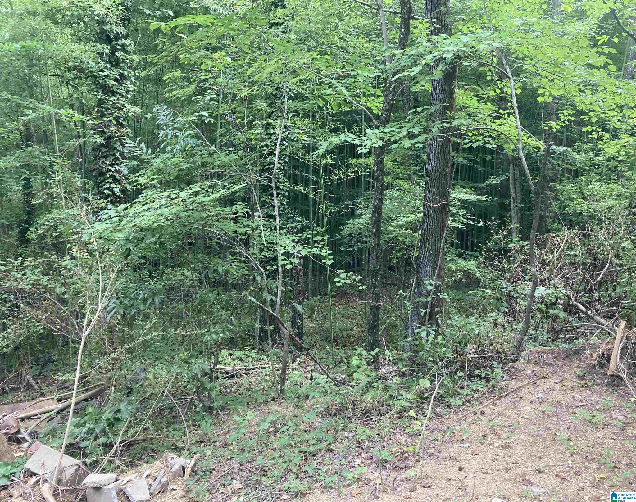 Lot In West Highland Crest