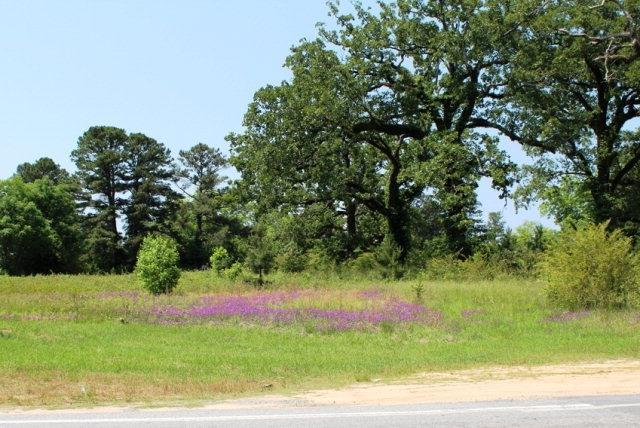 Lot In Fortson
