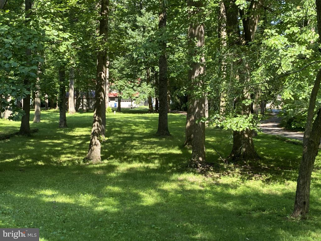 Lot In Accomac Shores