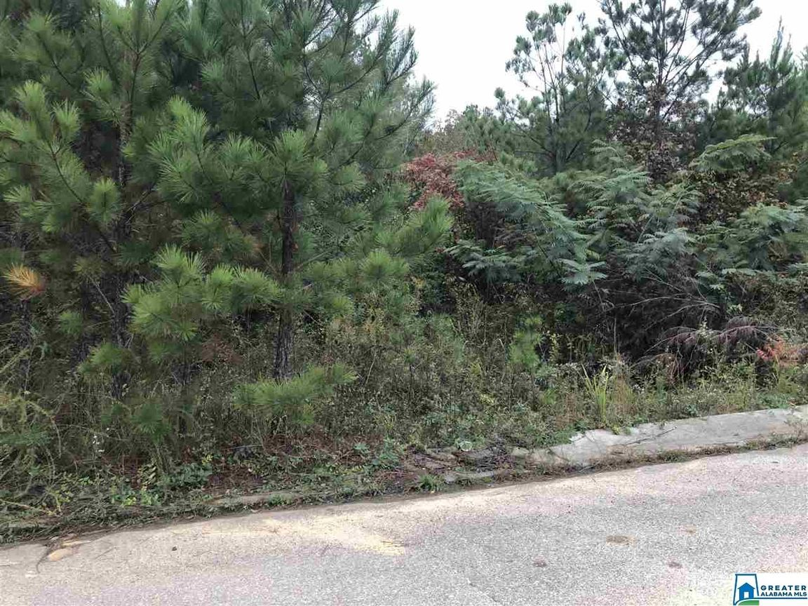 Lot In Promise Manor