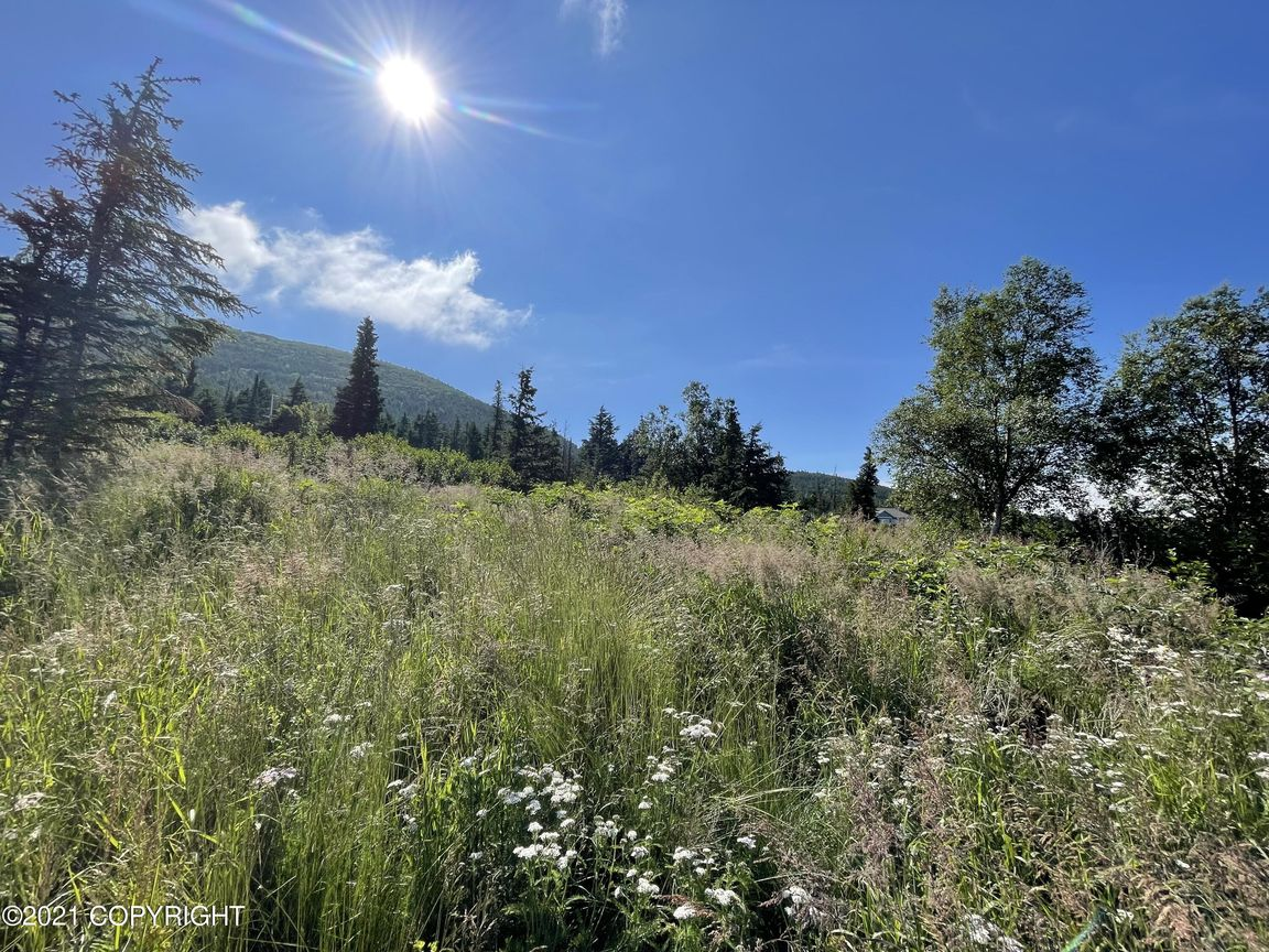 Lot In Anchorage
