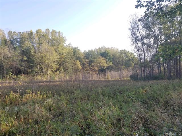 Lot In Mayfield Township