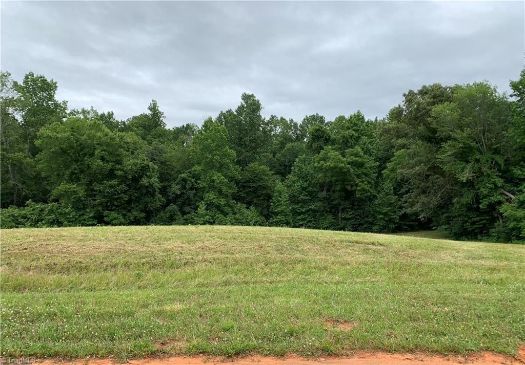 Lot In Browns Summit