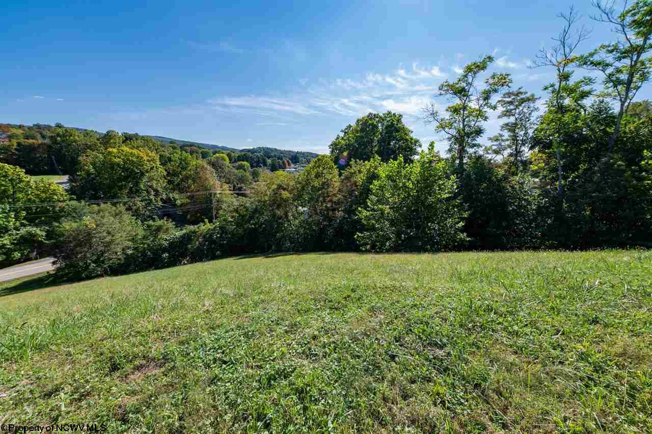 Lot In Brookhaven