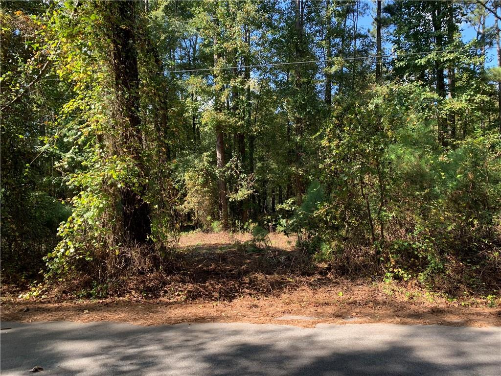 Lot In Conyers