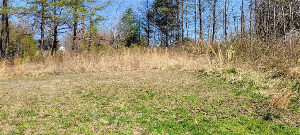 Lot In Mount Airy