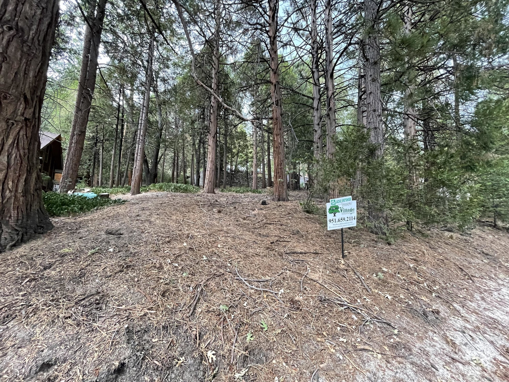 Multi-Family Home In Idyllwild