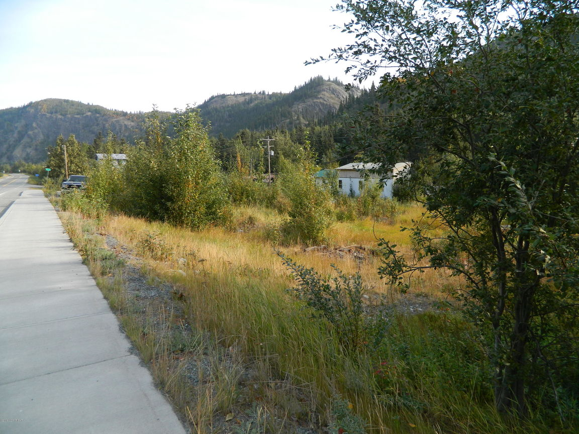 Lot In Chitina