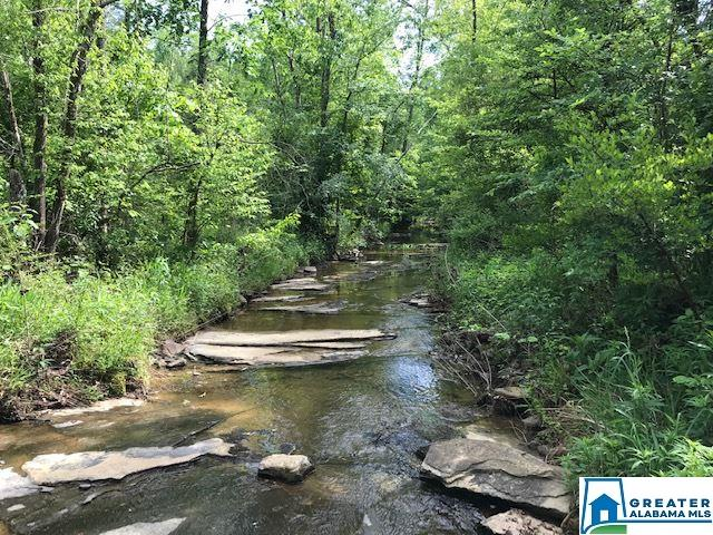 Lot In Odenville