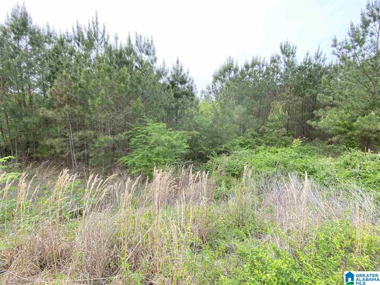 Lot In Clearview Estates