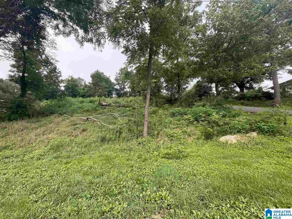 Lot In Oneonta