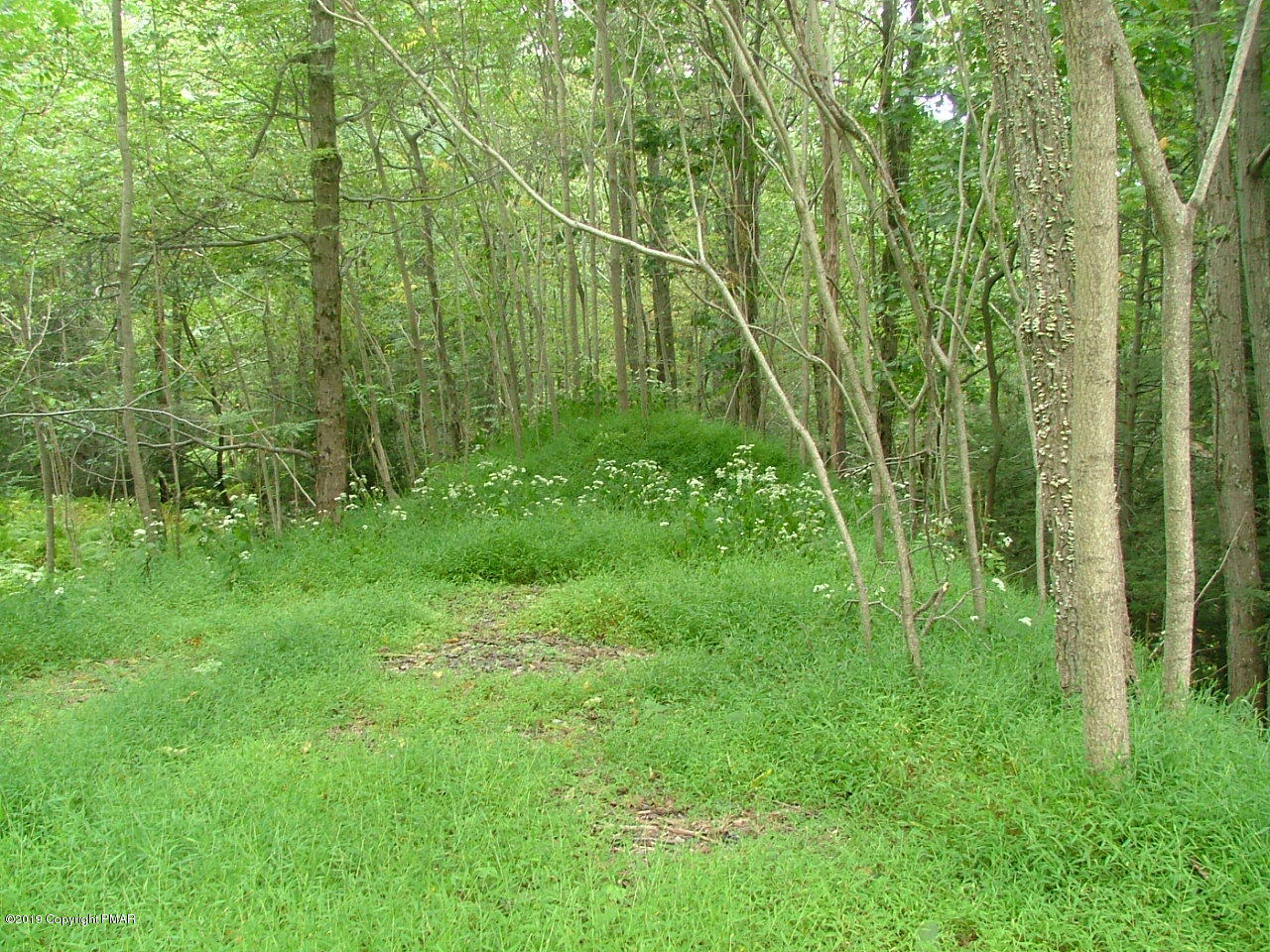 Lot In Swiftwater