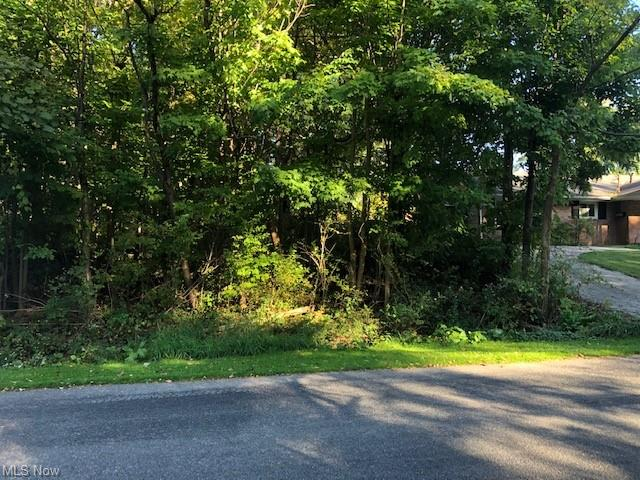 Lot In Rootstown